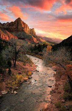 ~~The Watchman | Virgin River, Zion National Park at sunset with Watchman Peak catching the light | by Rob Macklin~~