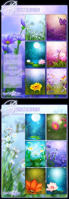 Mystical flowers fairy water