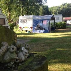Foto's   Camping de Morgenster Trunks, Camping, Plants, Drift Wood, Campsite, Tree Trunks, Plant, Campers, Tent Camping