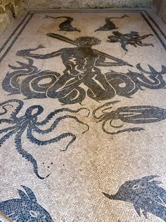 HERCULANEUM-A beautiful floor mosaic, depicting Neptune and various sea life, from the women's Apodyterium (a changing room that precedes the baths.)