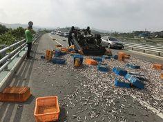 무안소방서, 1톤 트럭 전복사고 운전자 구한 소방관들