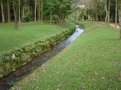 Riacho , Jardim Botânico - Rio de Janeiro