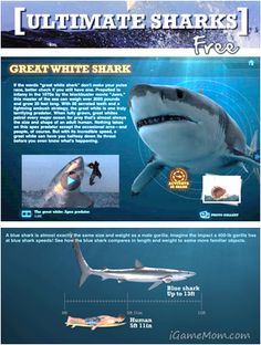 Free App: Ultimate Sharks Free from @Discovery Channel Channel Channel, packed with stunning pictures and videos and well written text. #edapps #apps #free