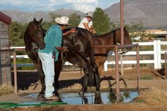 "Sunday Rest (who plays Mine That Bird) has mischief on his mind during his bath as horse wrangler Mike Chavez chats with assistant trainer Lisa Brown on the set of ""50 to 1."" It looks like he has his eye on that walkie talkie. Any idea what he'd say?— with Lisa Brown.... off the 50 to 1 the movie facebook page >>> https://www.facebook.com/50to1themovie"