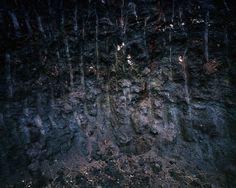 Mandíbula #3, 2015 - da Série Terra Vermelha Impressão por jato de tinta de pigmentos minerais sobre papel  revestido de baryta 150 x 180 cm