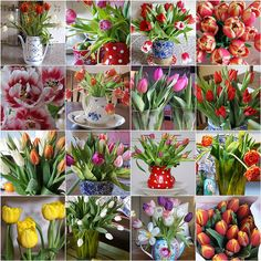 Boy...Do We Love Tulips! by dutch blue, via Flickr
