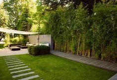 Welkom bij BUYTENGEWOON tuinen! - moderne stadstuinen | stijlvolle villatuinen | modern-klassieke tuinen | landelijke tuinen