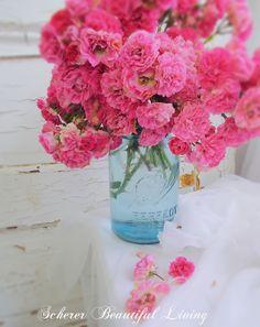 Romantic Rose Blue Mason Jar Photography Art Scherer Beautiful Living