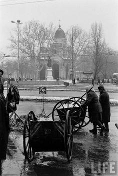 Gjon Mili, Timeline Photos, Snow, Outdoor, Bucharest, Outdoors, Outdoor Games, Outdoor Life, Human Eye