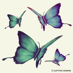 23837f52f 41 Best Butterfly Fly Away images in 2014   Butterflies flying ...