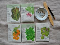 Seed Packets as Information Buckets