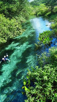 Bonito, Mato Grosso do Sul, Brazil Top 10 Places With Clearest Water To Dive In