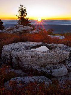 Bear Rocks Preserve West Virginia  time for reflection... by Brent McGuirt Photography, via Flickr