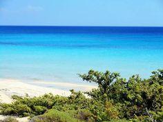 I Caraibi di Puglia: da Ginosa Marina alle Marine di Leporano, Pulsano, Lizzano e alla Riserva Naturale della Salina Monaci: uno spettacolo unico! Scopri di più: http://www.madeintaranto.org/caraibi-di-puglia-paradiso-terra-di-taranto/  #Taranto #Puglia #cittadavivere #citywiew #Italy #Madeinitaly #Madeintaranto