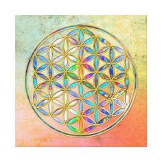 Die 252 Besten Bilder Von Mandalas Und Blume Des Lebens Flower Of