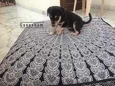 Ganesham Handicraft - Huge mandala tapestry Dog or Cat be... https://www.amazon.com/dp/B072LSNM7V/ref=cm_sw_r_pi_dp_x_Z8W0zb7QTRTXY