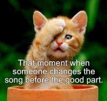 HATE that. #music #joke