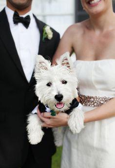 WEEKEND INSPIRATION: Dogs in Weddings // www.jordanmcbride.com