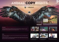 Animal Copyrights Wwf/latinstock Cheil Spain BRONZE CANNES LIONS PROMO AND ACTIVATION