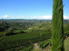Landscape  of  Piedmont  by  luigi  rabellino