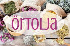 Detta är en del 1 Morotslivs serie om vilda växter och deras användning.Nu kommer juni och det är just nu, före midsommaren, som är den bästa tiden att plocka örter och växter.Du kan använda dem färska, torkade eller låta dem dra i olja eller sprit för att komma åt olika önskade effekter. Nu ska vi … Herbal Oil, Sprit, Plant Based Recipes, Natural Skin Care, My Little Pony, Health Tips, Body Lotion, Herbalism, Remedies