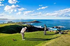 Image result for golf Golf Courses, Sports, Image, Hs Sports, Sport