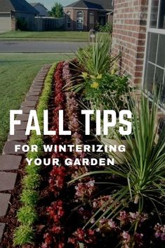 fall tips for winterizing your garden Vegetable Garden Tips, Garden Tools, Garden Ideas, Growing Vegetables, Growing Plants, Organic Gardening, Gardening Tips, Flower Gardening, Fall Lawn Care