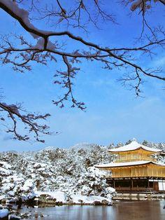 雪の金閣寺が大変素晴らしかったです。 - ツイナビ | ツイッター(Twitter)ガイド