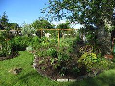 A garden blog for the NW