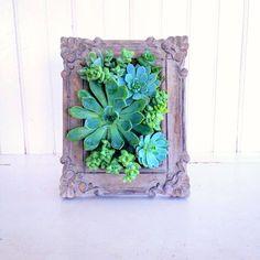 Vertical Succulent Planter Garden by VerticalFlora on Etsy, $70.00