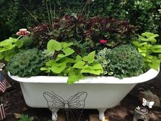 My garden bathtub question...do u fill the tub with potting soil or do u just put various pots of plants in the tub?