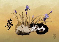 Spade's Dreaming Cat by Matthew Schwartz