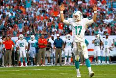 Image result for miami dolphins 2014