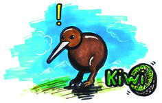 The Kiwi's question
