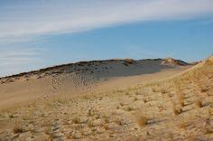 Dead Dunes @ Neringa, Lithuania by Aurimas Šatas on 500px
