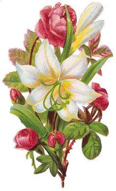 Flowers299