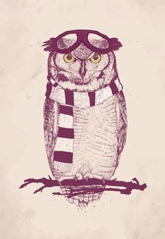 Poster | THE AVIATOR von Balazs Solti | #poster #design #illustration #balazssolti #bsolti #art #artwork #drawing #owl #hipster