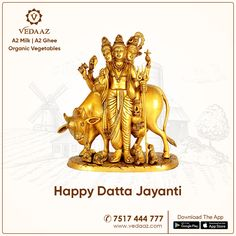 Wishes to Everyone on Occasion of #DattaJayanti. Peace, Prosperity and Love be with Everyone ! दिगंबरा दिगंबरा श्रीपाद वल्लभ दिगंबरा !!  www.vedaaz.com | 7517444777  #A2milk #A2ghee #organicvegetables #homedelivery #blessings Bookends, Cow, Lion Sculpture, Milk, Statue, Happy, Happiness, Sculpture, Being Happy