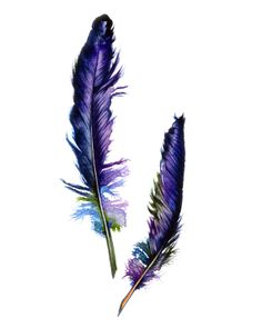Purple Feathers, Home Decor, Wall Decor, Watercolor Print, Archival Print, Bird Feathers