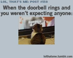 When the doorbell rings and you weren't expecting anyone
