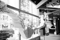 Window displays by INDO