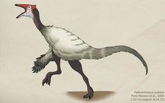 Pelecanimimus polydon Werewolf, Birds, Deviantart, Green, Artwork, Animals, Image, Life, Dinosaurs