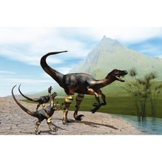 Velociraptor offspring beg mother dinosaur for food near a pond Canvas Art - Corey FordStocktrek Images (35 x 23)