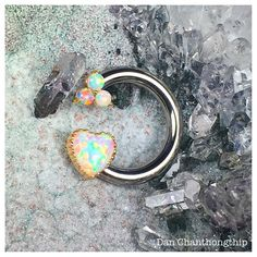 "1,413 Likes, 3 Comments - @dchanthongthip on Instagram: ""Anatometal 18k Yellow Gold White Opal Heart and Trio threaded ends on ASTMF136 Ti circular barbell…"""