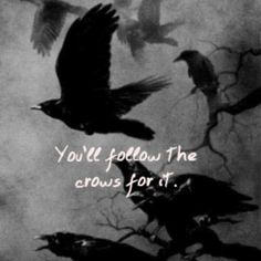 """An Irish proverb meaning """"to miss something after it was gone. Raven And Wolf, Quoth The Raven, Irish Proverbs, Raven Art, Jackdaw, Crows Ravens, Norse Mythology, Fire Emblem, Dark Fantasy"""
