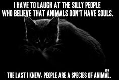 In my opinion, people are a rather low form of animal species!