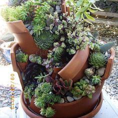 clay-pot-succulent-mess.jpg (573×573)