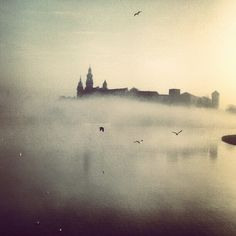 #Kraków #Cracow #foggyday My Town, Exterior Design, Poland, Mists, Bloom, Photography, Travel, Painting, Outdoor