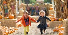 Save up to 50% off your favorite fall festivals, farm fun and Halloween haunts in Washington DC, Maryland and Virginia. #CertifiKIDAd