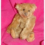 Antique Stieff teddy bear... 1906 Stieff 8 inch teddy bear.